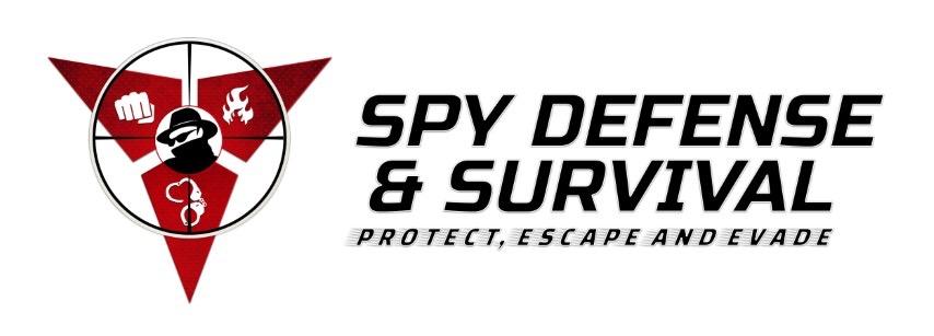 SDS.logo (Small)